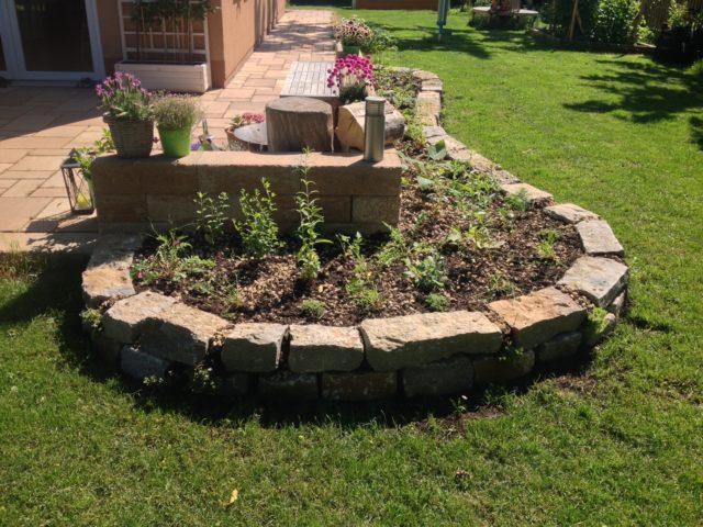 Trockenmauer bepflanzt