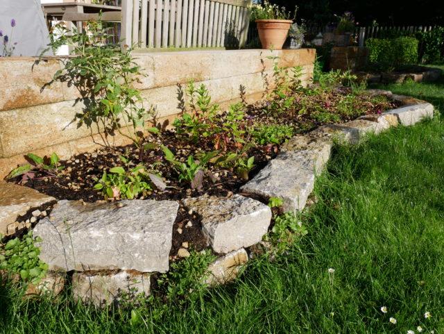 Trockenmauer Muschelkalk 2 - Oliver Franke Naturgärten